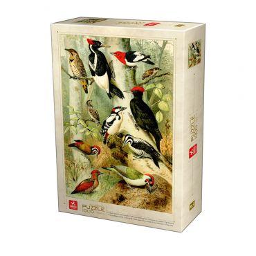 Encyclopedia Puzzle - Birds - 1000 piese
