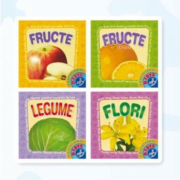 """Set 4 Cărți Pliante """"Fructe"""""""